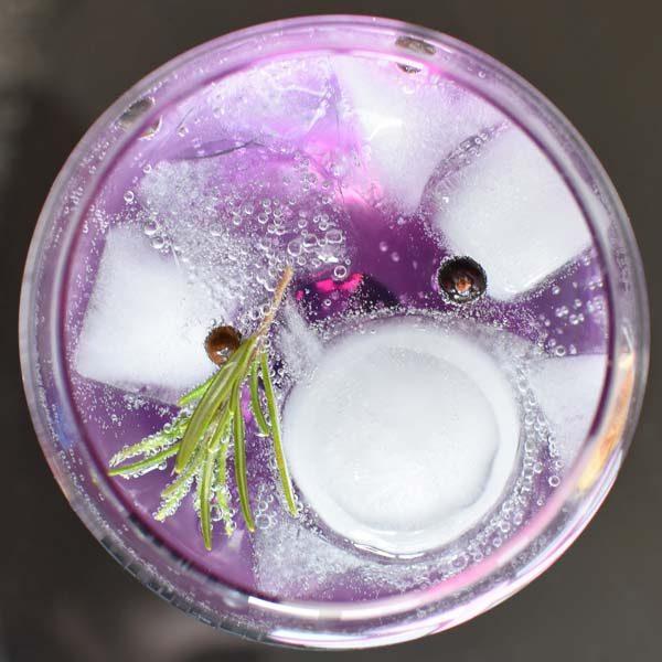 selber Gin herstellen